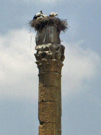 Silifke. Templo de Zeus.
