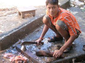 Pescatero de Sílchar.